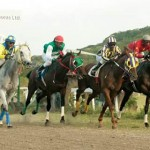 Horse Racing  In The Caribbean